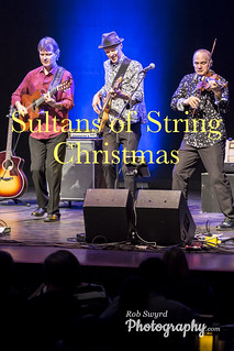 Sultans of string Christmas 2019