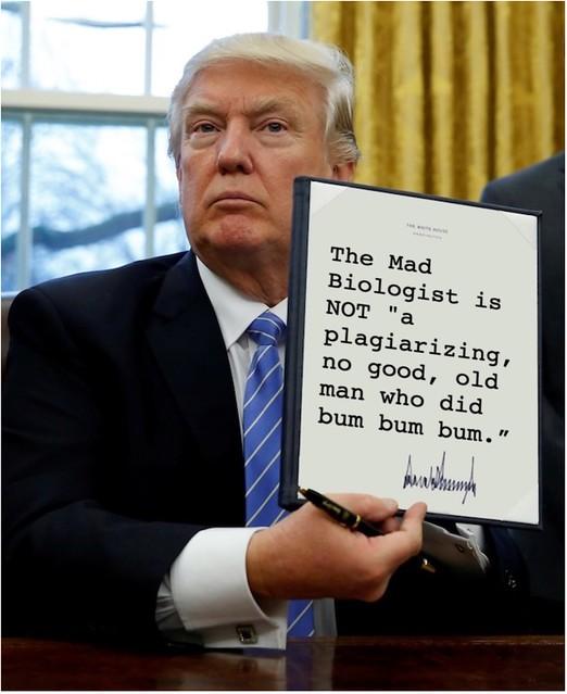 Trump_bumbumbum