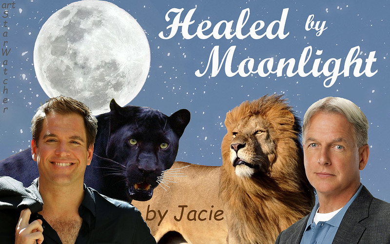 Starry sky background, full moon top left.  Across bottom, left to right, Tony DiNozzo with black panther behind him, looking over his left shoulder so that their heads are next to each other, African lion looking toward Tony/panther, Gibbs to right of lion, his head next to lion's.  Text reads 'Healed by Moonlight' at top right of sky.