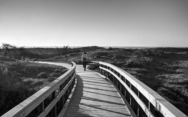 A stroll to the beach