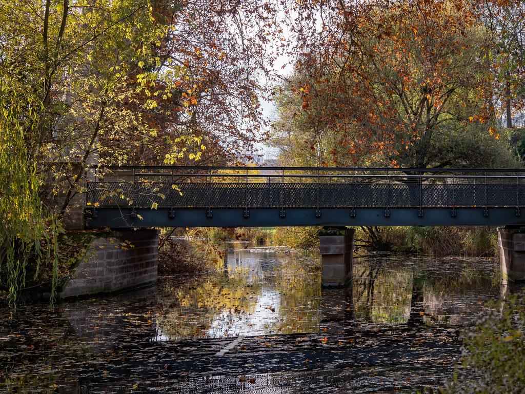Un pont sur l'automne...+ nouvel ajout. 49162089212_27f0966f94_b