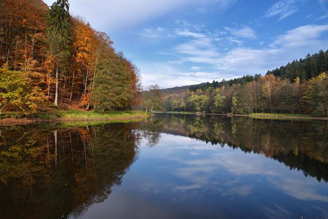 L'étang dévoile ses reflets…