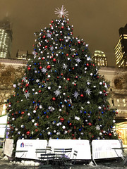 Picture Of The 2019 Bryant Park Christmas Tree In New York City. The Bryant Park Christmas Tree Will Be Lit On Thursday December 5, 2019. Photo Taken Monday December 2, 2019