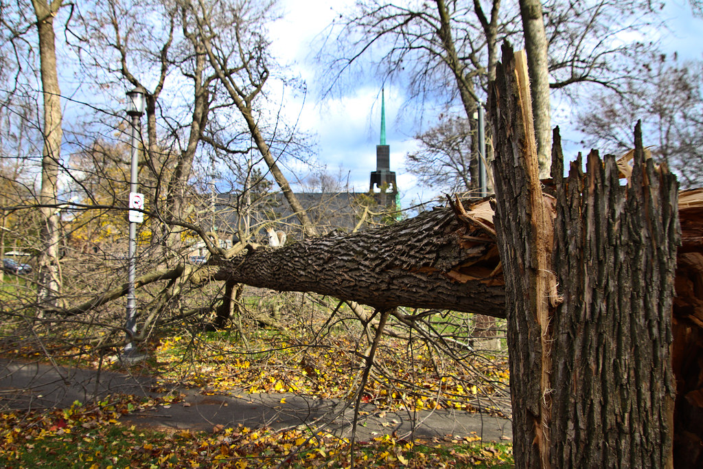 1 November 2019 storm in Lachine-7
