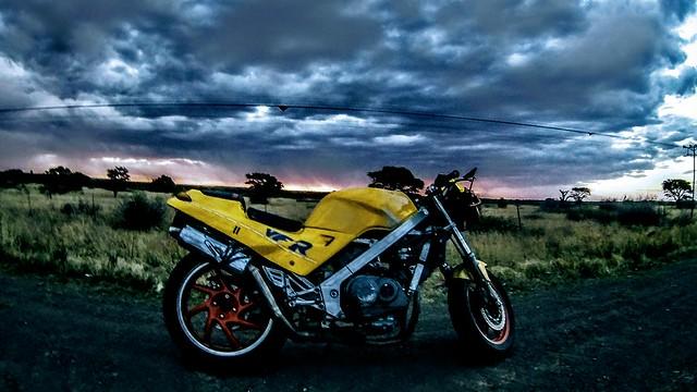 HD Motorcycle and Nature Photo