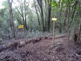 Le sentier Carbunari supranu à l'arrivée au PR2