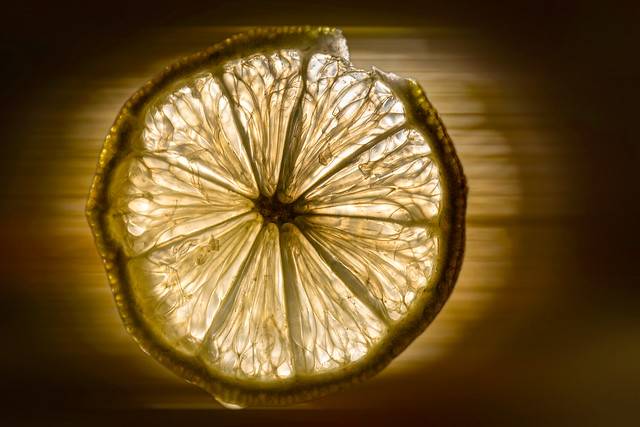 the Speedy Lemon