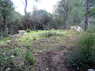 Encore une carbunara traversée par le sentier du Pisciaronu
