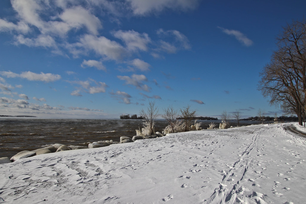 13  Nov 2019 Icy Shore Bigs
