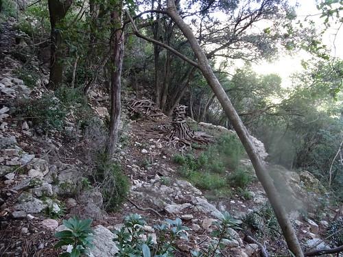 Carbunara et meule le long du sentier