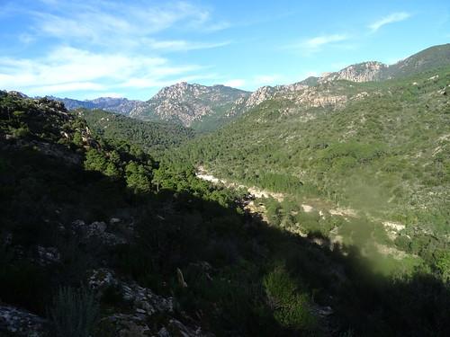 La vallée du Cavu depuis le sentier des carbunari
