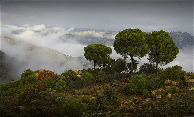 Paisaje de la Sierra de Andújar