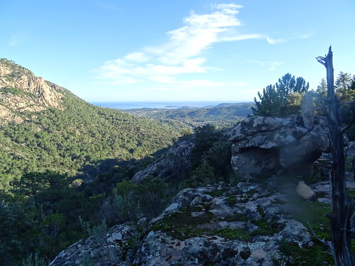 La vallée du Cavu vers l'aval et le littoral depuis les alentours de la piste de Luviu