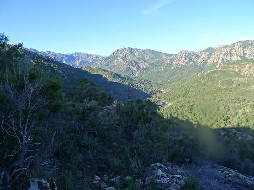 La vallée du Cavu vers l'amont depuis la piste de Luviu