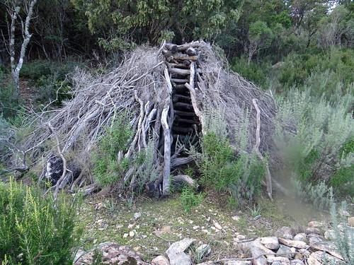 Carbunara avec meule sur le plateau de Ranedda