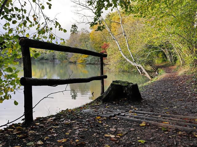 Vue d'automne à Morchêne