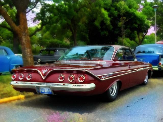 Impala, Sixty-One