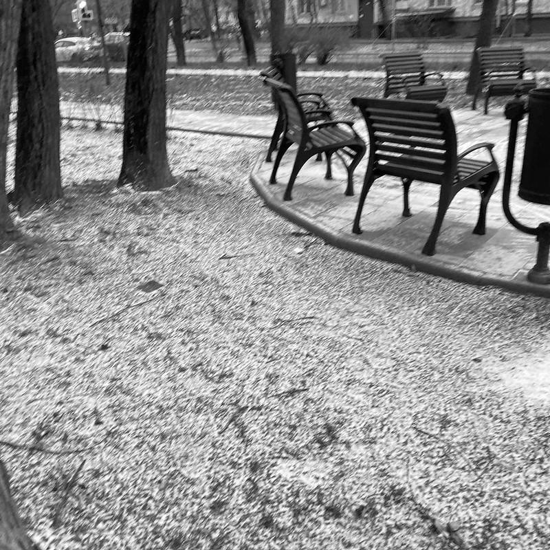 Поздняя осень на Соколе
