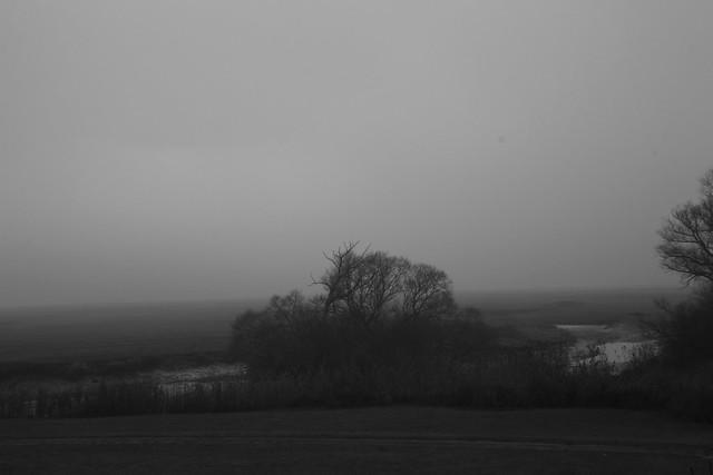 Haseldorf im Nebel