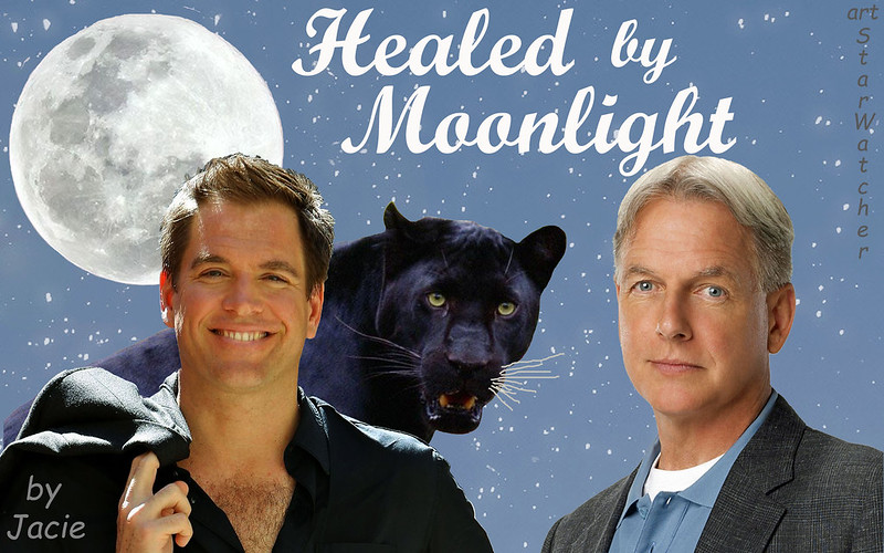 Starry sky background, full moon top left.  Across bottom, left to right, Tony DiNozzo with black panther behind him, looking over his left shoulder so that their heads are next to each other, Gibbs to right of panther; Tony's and Gibbs's heads bracket the panther's head.  Text reads 'Healed by Moonlight' at top right of sky.