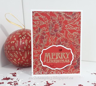 Peonies Background Christmas cards