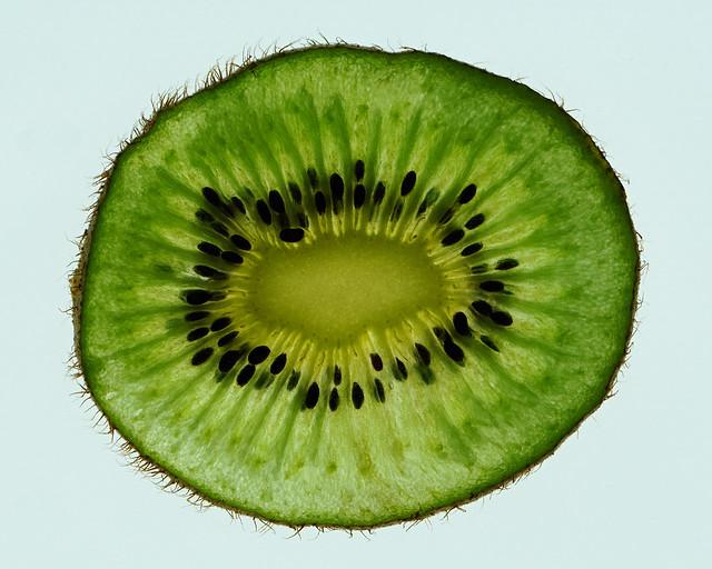Backlit Kiwi Fruit Macro
