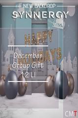 Synnergy December Group Gift