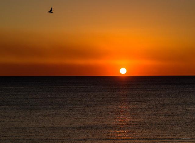 Setting Sun over Moonta Beach