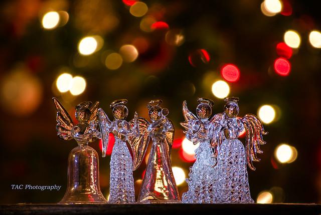 Christmas angels singing