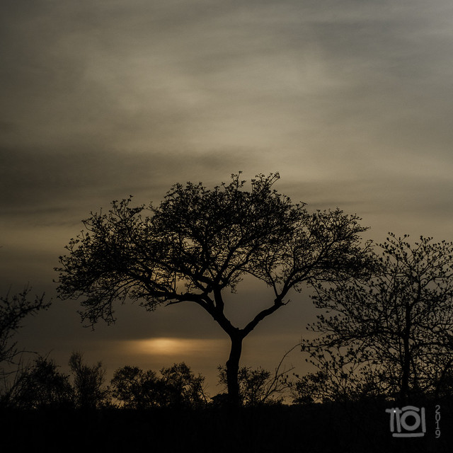 Cloudy sunrise at Talamati
