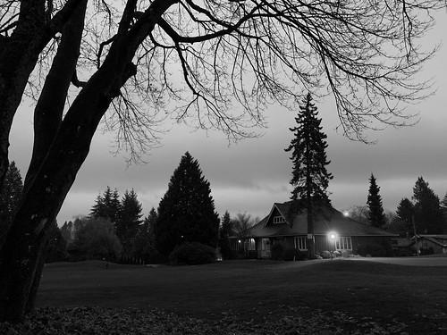 Dark December dusk