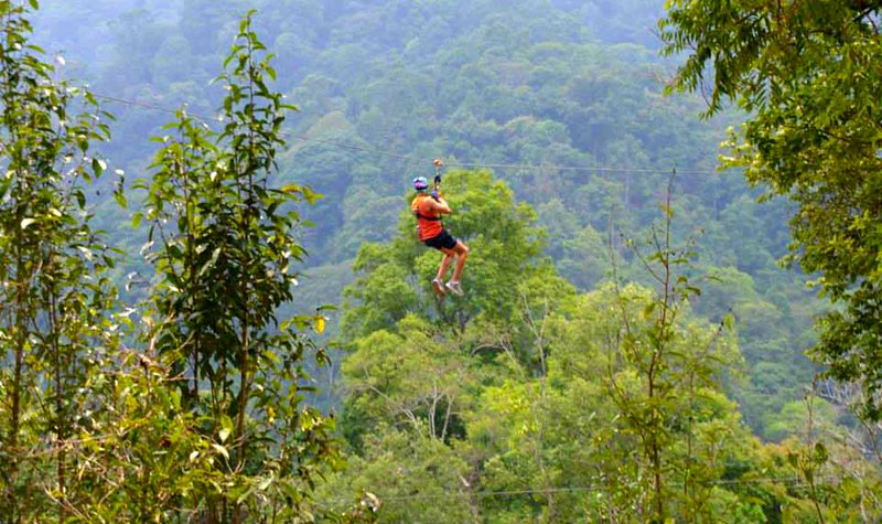 Thai Jungle Zipline & Trekking (Chiang Mai, Thailand) – Brochures, Info, Price & Travellers Reviews