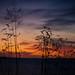 sunset_IMG_8926.jpg