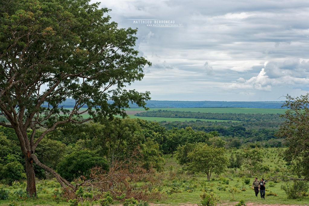 Chapadas dos Guimaraes, Mato Grosso