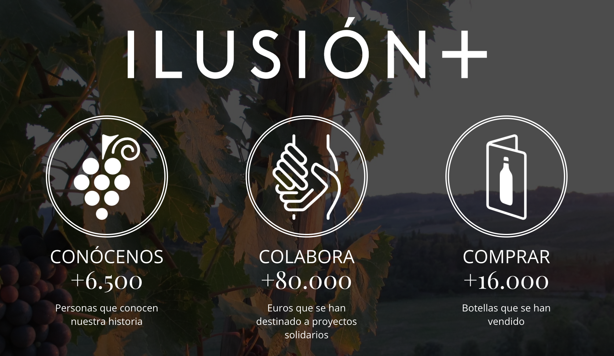 09-ILUSION+