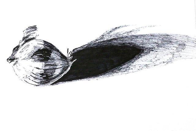 רפי פרץ אמן צייר רשם ישראלי מודרני רישום  עכשווי אמנות ישראלית עכשווית מודרנית  רישומים אומנות raphael perez  israeli painter artist