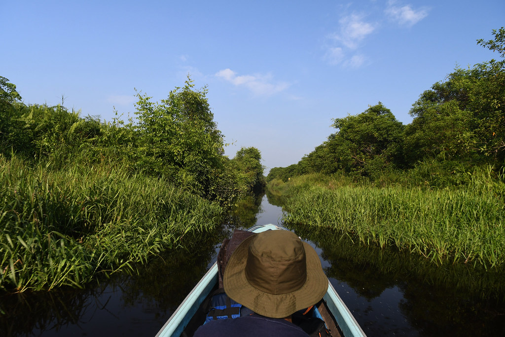Down the peat canal by katingting canoe.