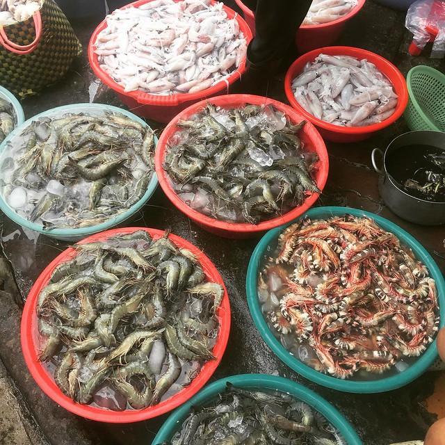 Phượt Vũng Tàu – Kinh nghiệm mua hải sản chợ Xóm Lưới (1)
