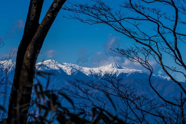 木々間より・・間ノ岳と北岳がクッキリ