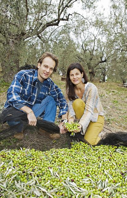 Margit und Richard Schweger bei der Olivenernte