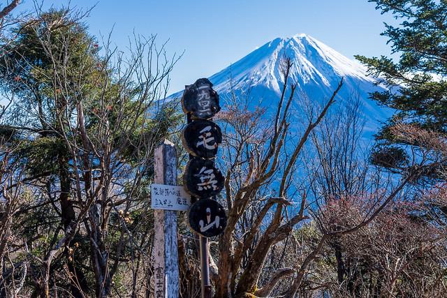 毛無山の山標と富士山