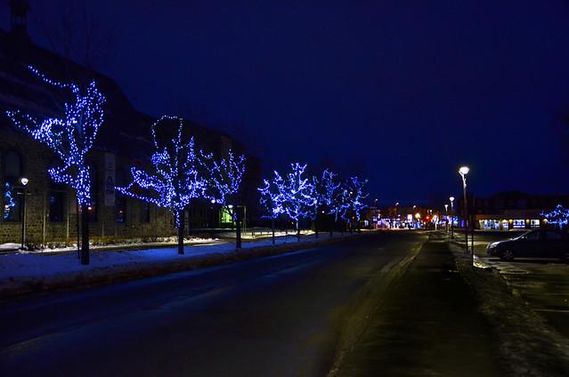 Photo de nuit, avec arbres illuminés à Rimouski.