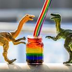 bottling rainbows