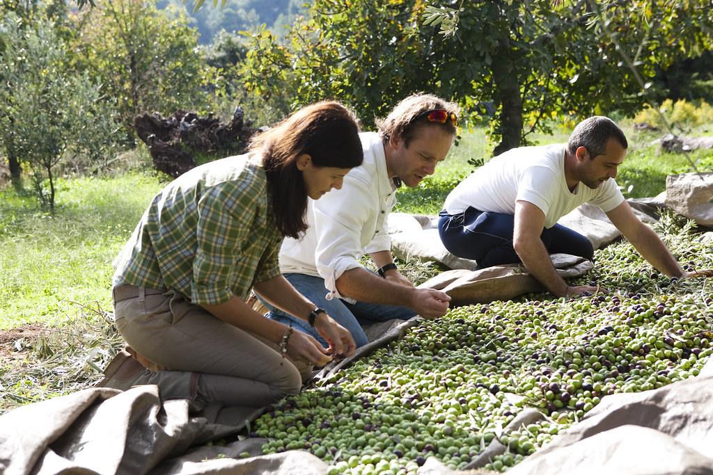 Margit und Richard Schweger bei der Ernte