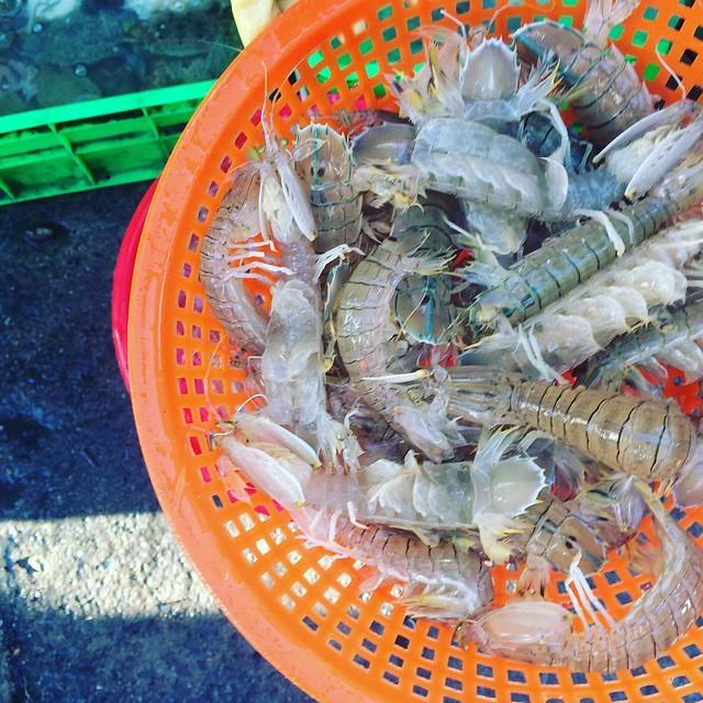 Phượt Vũng Tàu – Kinh nghiệm mua hải sản chợ Xóm Lưới (18)
