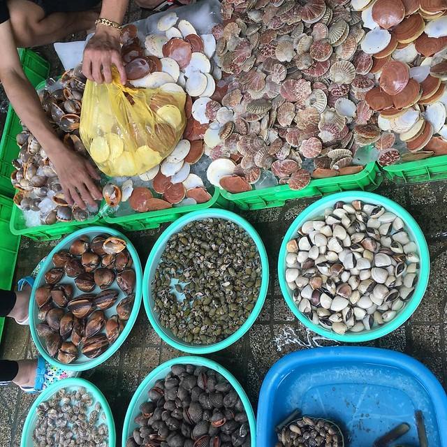 Phượt Vũng Tàu – Kinh nghiệm mua hải sản chợ Xóm Lưới (12)