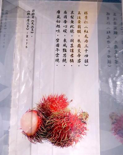 20191129-林景仁寫紅毛丹 拷貝
