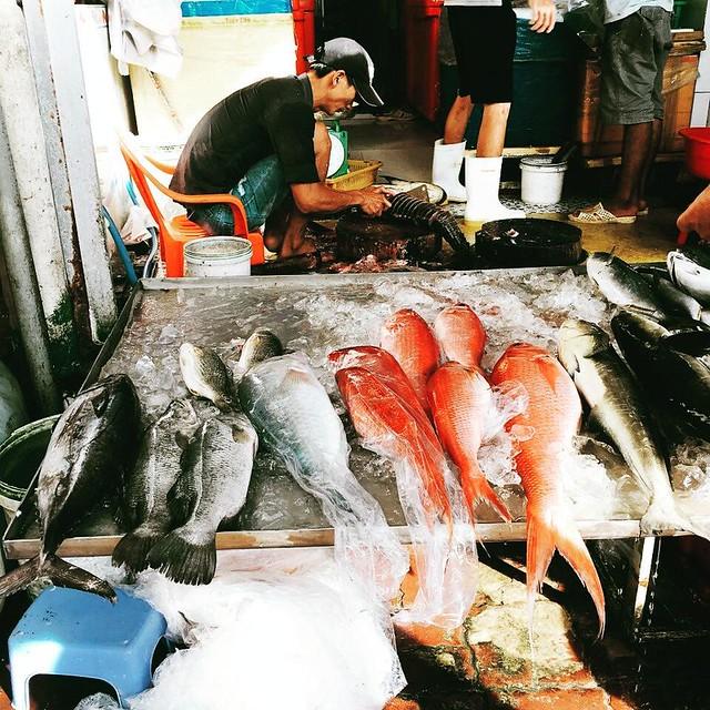 Phượt Vũng Tàu – Kinh nghiệm mua hải sản chợ Xóm Lưới (23)