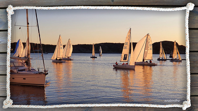 Sailing December 1st (3)