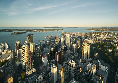auckland newzealand cityscape